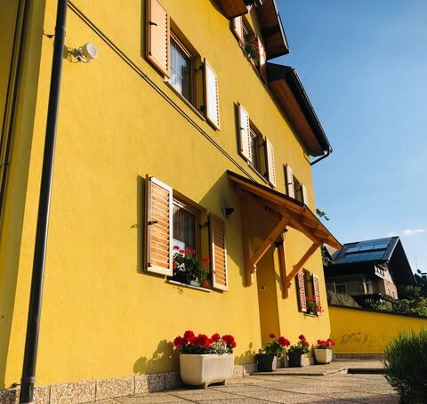 Geltonas namas. Įėjimas ir privati automobilių stovėjimo aikštelė