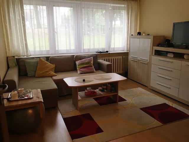 Centrum Szczecina kawalerka - Szczecin - Apartament