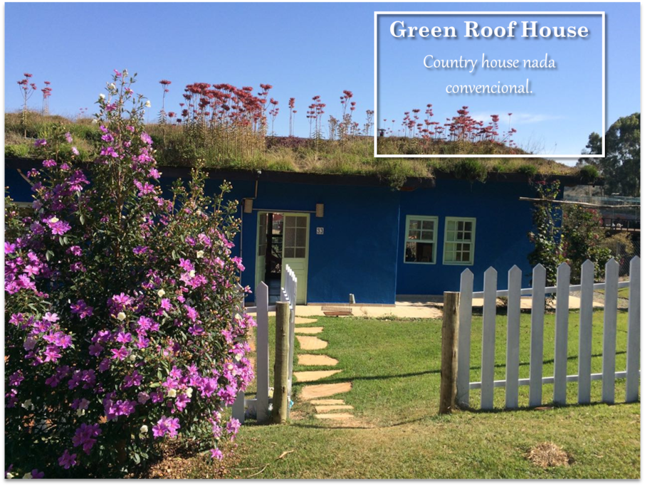 Green roof House keeps the house cool during summer