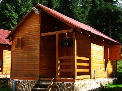 Carpathian Mountain houses 2 persons AAAA