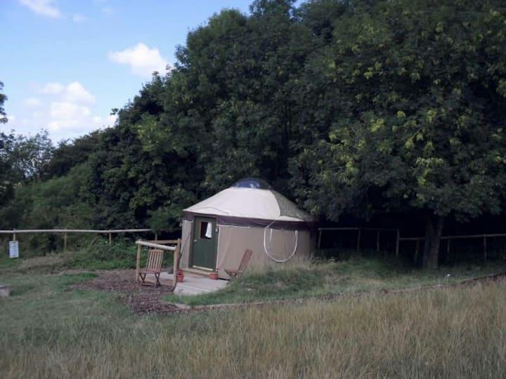 Linnet Yurt, Near Lyme Regis, River Cottage.