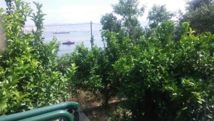 batsi arion sea view