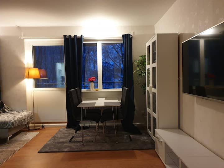 Three rooms apartment and furnished