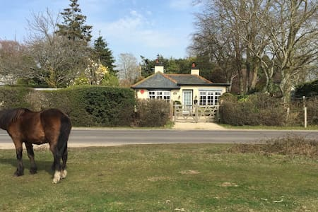 Superb New Forest Fronting Cottage - East Boldre - 独立屋