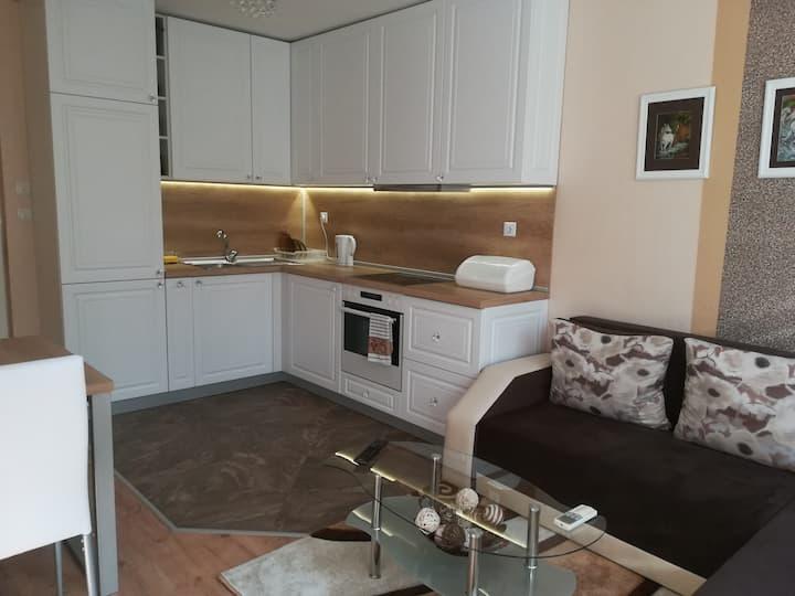 Apartment Topalovi 2