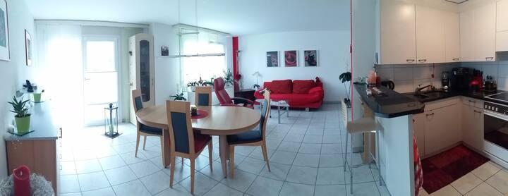 3 1/2 Zimmer Whg. nähe Luzern / Römerswil
