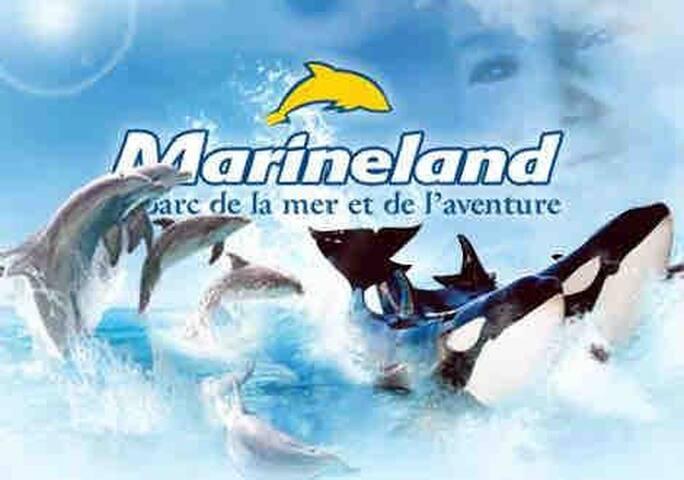 ***Studio vue Mer, Parking Piscine Marineland***