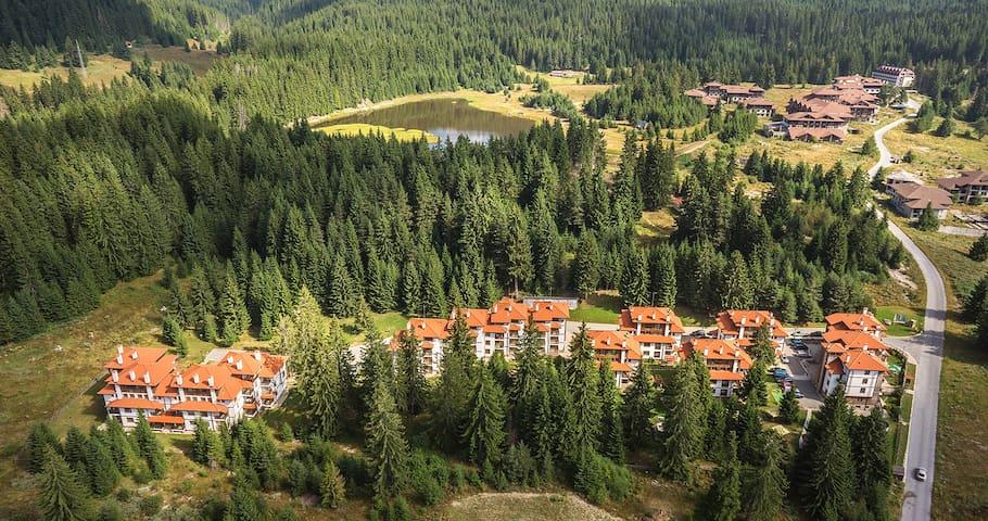 Mountain Lake View Apartment