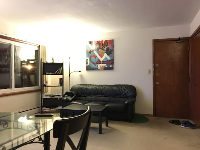 Just few blocks to the Downtown/UofM/Mississippi - Minneapolis - Apartment