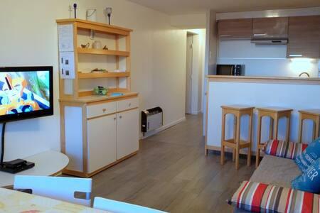 Appartement rénové aux pieds des pistes - Besse-et-Saint-Anastaise - Apartment