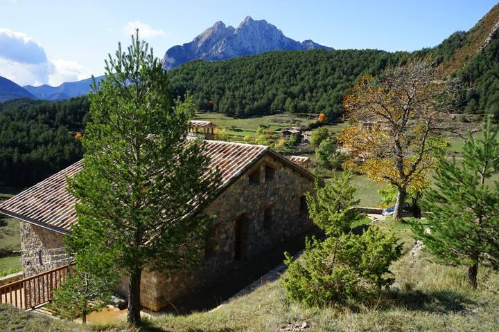 Casa ecologica y rodeda de montañas y prados