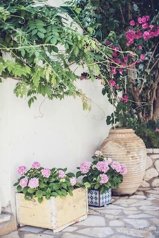 Cozy flowers