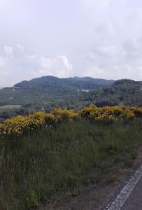 Dalla nonna in campagna alle soglie del bosco - Avolasca