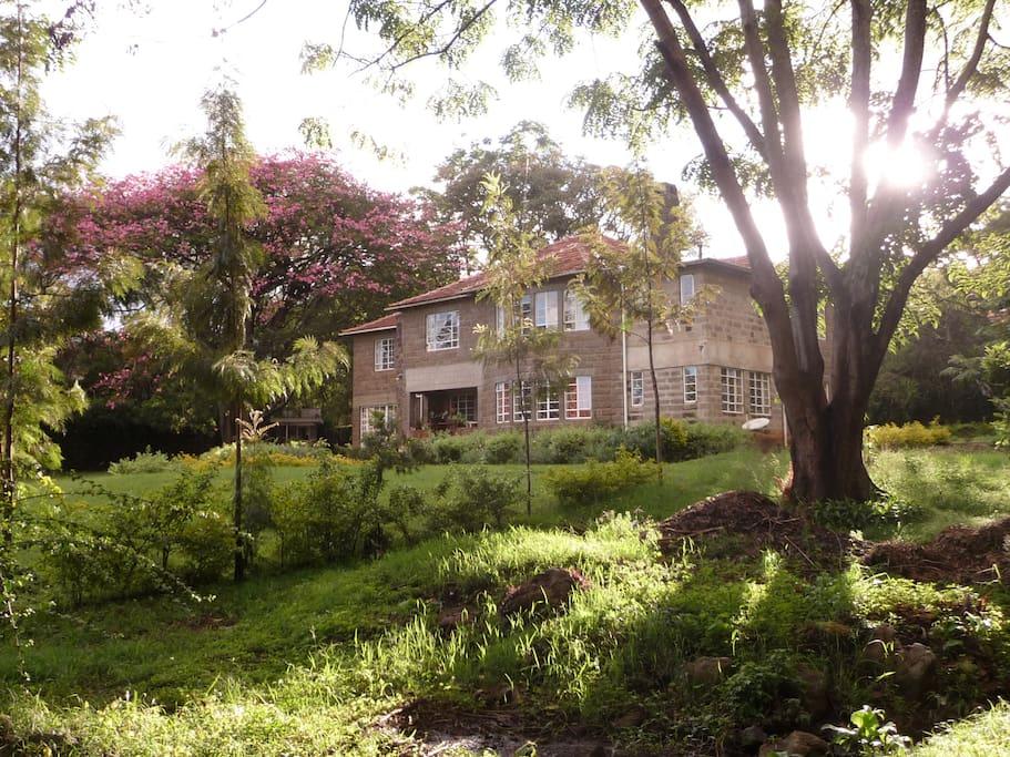 belle maison ancienne dans un jardin tres calme ,et grand.