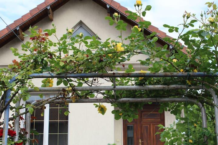 Studio avec jardin, prox de cité des sciences - Aubervilliers