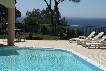 Home Monaco Montecarlo swimming pool (shared)