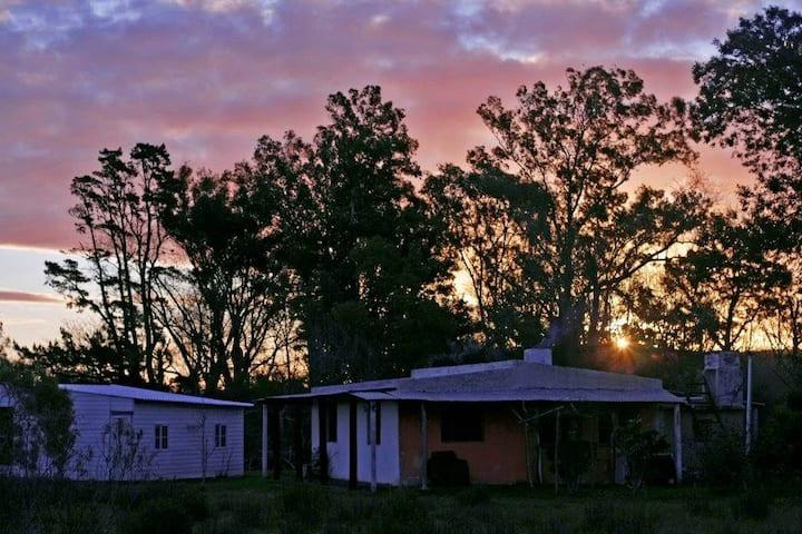 Les Artistes | Casa de campo con desayuno casero.