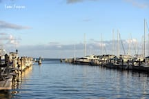 Picture of the marinas