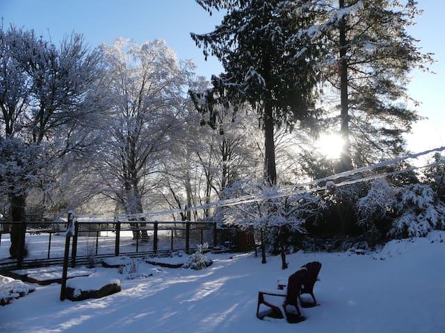 Cranberry Lake King Garden Suite,  B&B/Retreats