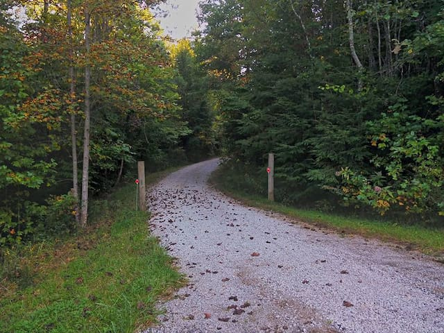 Driveway at 472 Bill Neal Rd, Whitley City, KY 42653 (Parkers Lake).