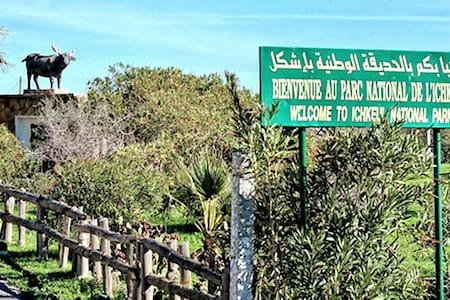 Dar Salammbô