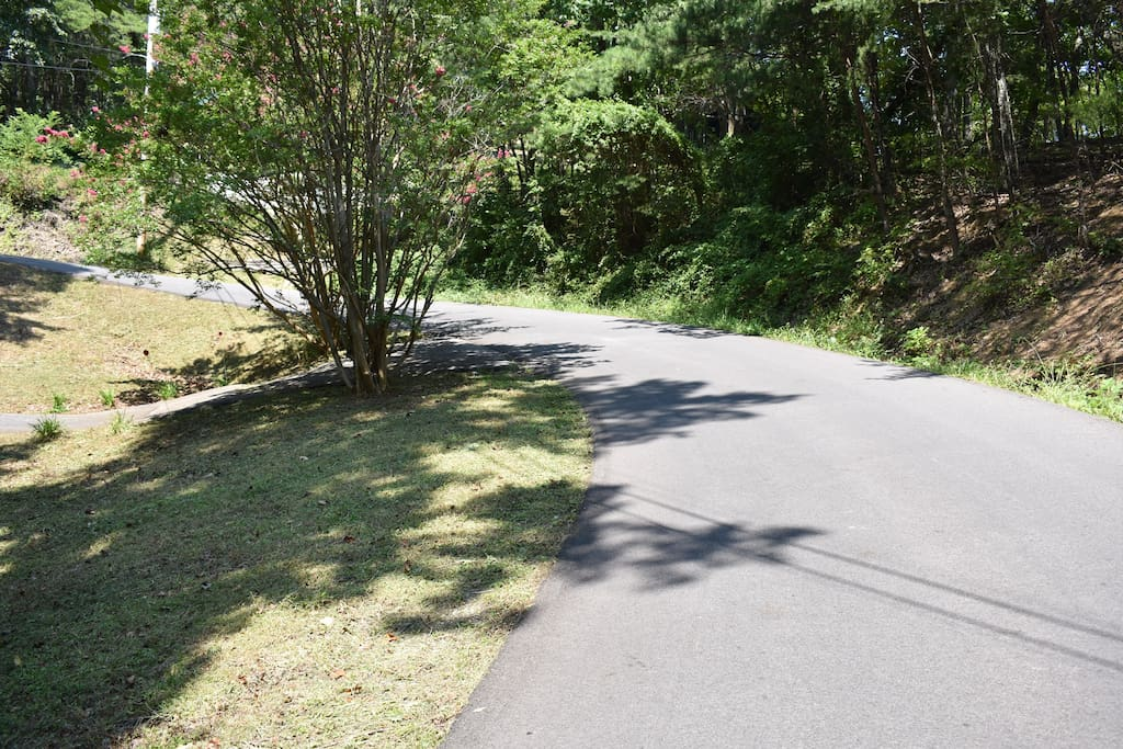 The road and drive way to the cabin