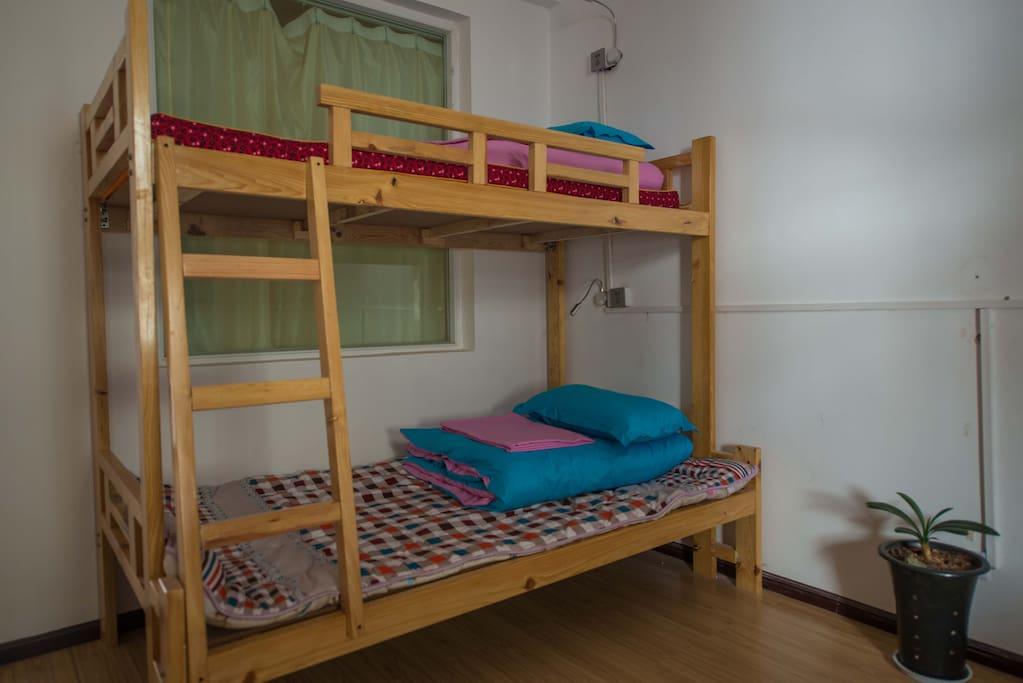 每个房间都有绿植