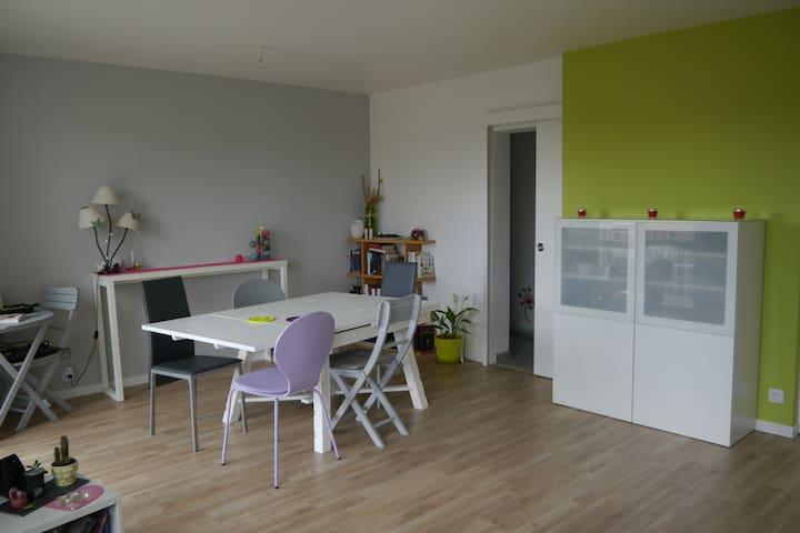 Appart. 3 chambres 80m2 15min à pied centre Saumur - Saumur - Lejlighed