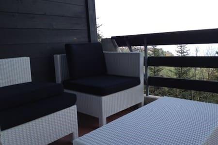 Appartement de vacance en montagne - Torgon