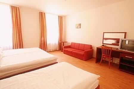 SPACIOUS Apartment  B&B / DOUBLE   #dbl#2 - Prag - Bed & Breakfast