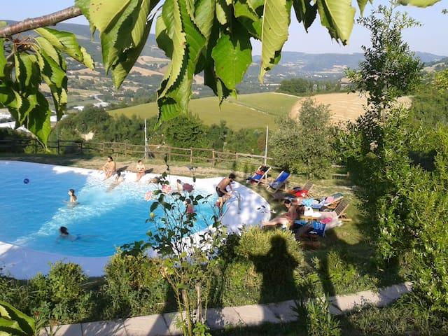 L'agriturismo nel bosco, Natura,relax. - Urbino - Bed & Breakfast
