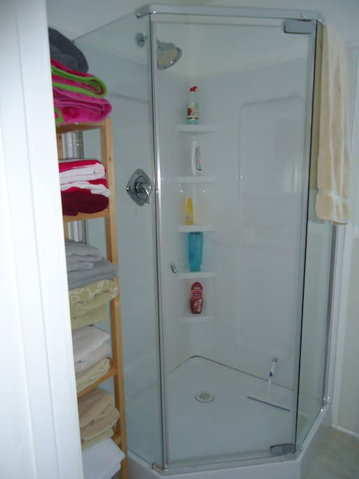 This is the downstairs shower. There is a lovely big bathtub in the upstairs bathroom (sorry no photo at the moment)