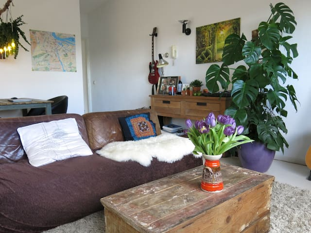 Cosy room in bohemian apartment