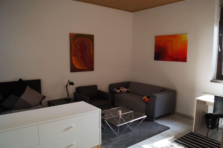 Wohn-/Schlafbereich mit Blick auf die Couch
