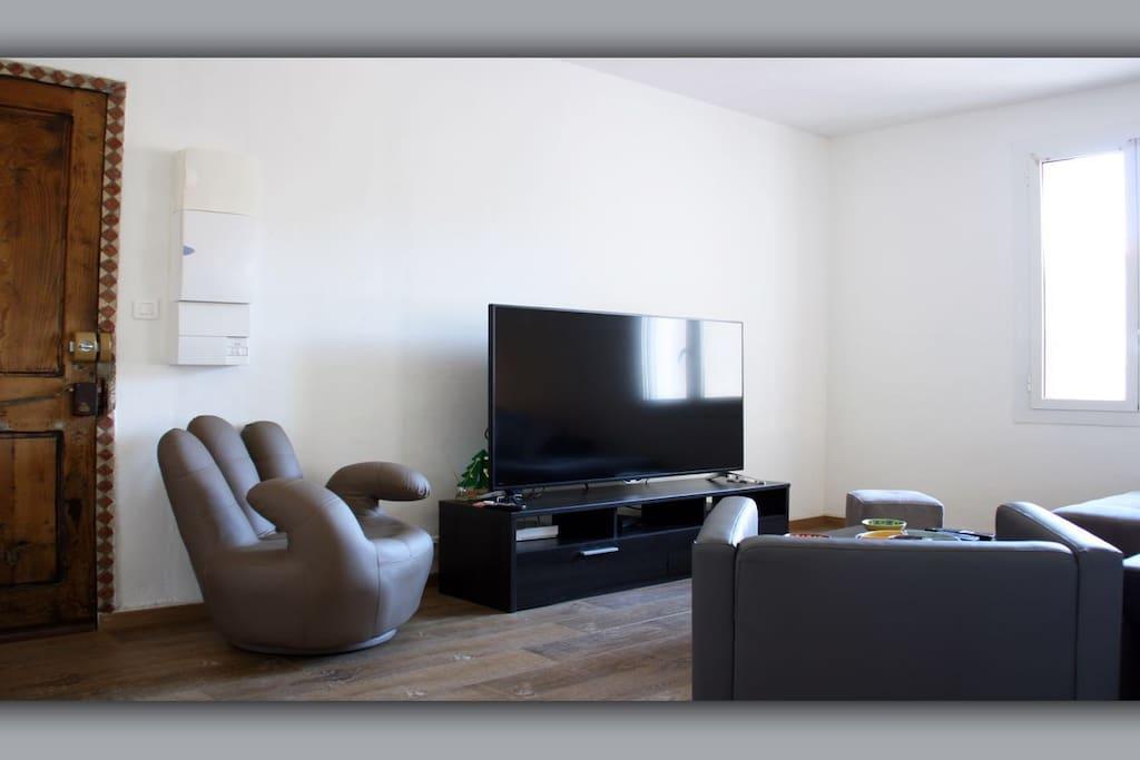 salon avec grande TV