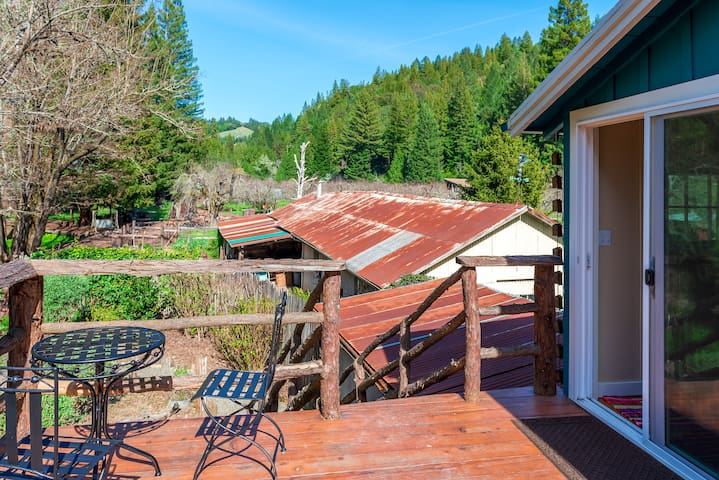 Here's a view of Forest View Ranch from our Tree House deck.