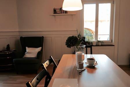 Modern spacious room in city hip neighborhood - Zurique