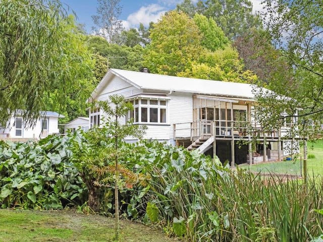 House on 3.5 acres reduced rental for dog care - Karaka - House