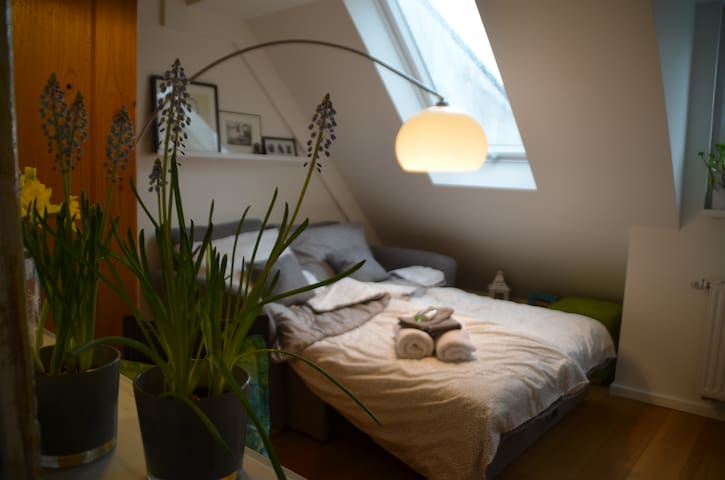 nice room, near lake Alster and central station