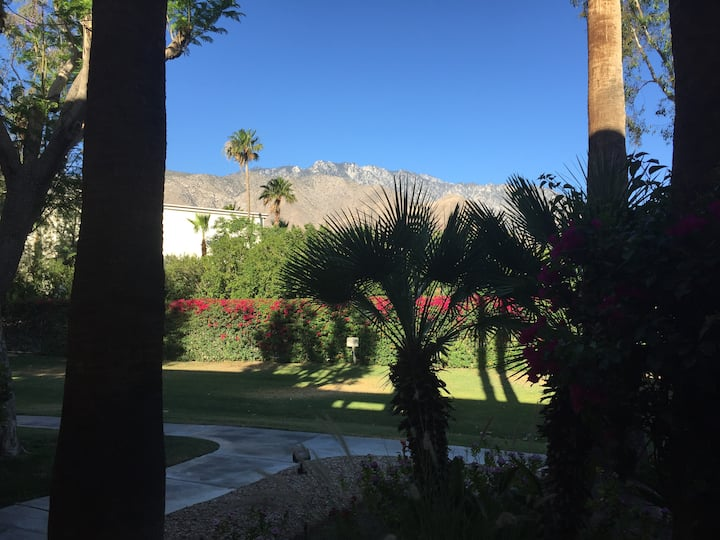 Beautiful condo in the heart of Palm Springs