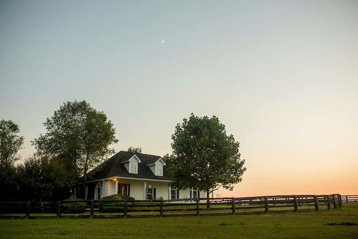 Bed, Barn & Breakfast - A Truly Unique Experience!