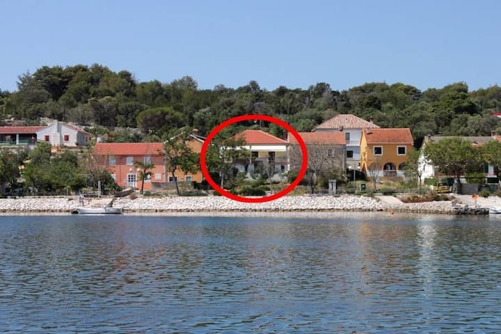 One bedroom apartment near beach Veli Rat, Dugi otok (A-437-c) - Veli Rat
