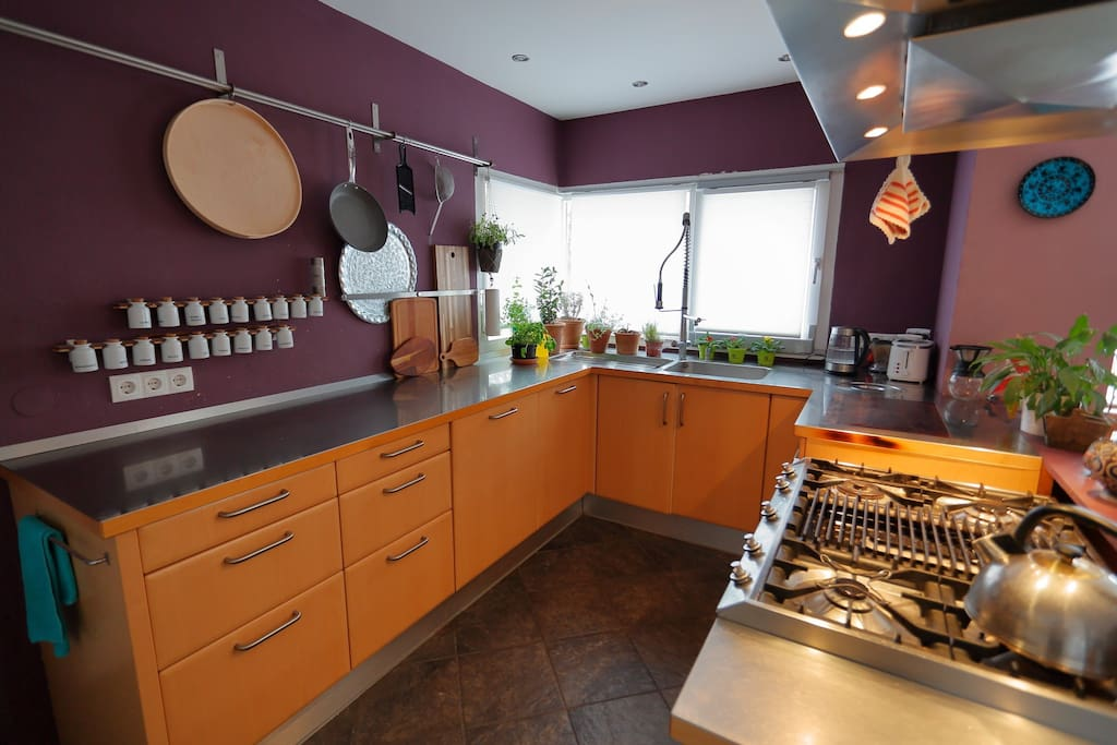 Spacious professional kitchen