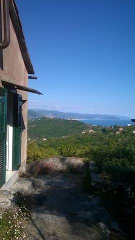 magic house between hills and sea