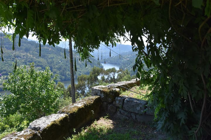 View of the River Douro