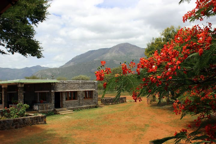A 'Wild Haven' for your vacation - Nilgiris - Bed & Breakfast