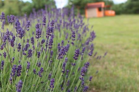 LavenderVilla