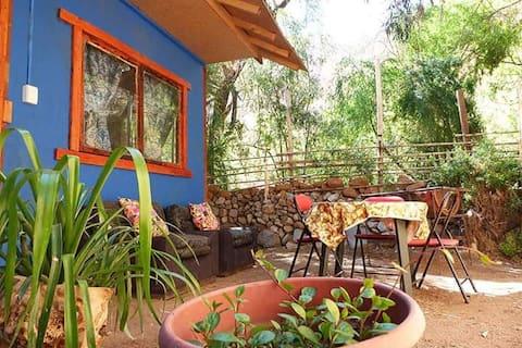 Jacaranda Horcon Cabin Lower Elqui Valley