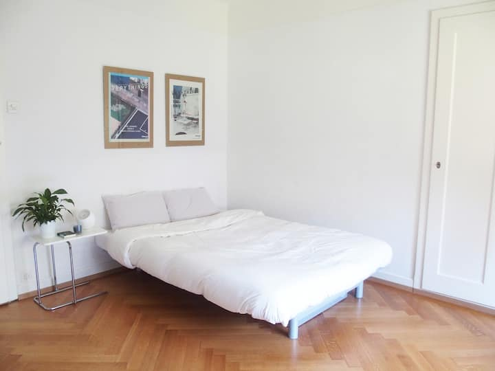 Cosy nest in the heart of Lausanne