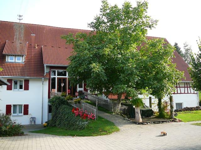 Gemütliche Wohnung über dem Wolfegger Achtal